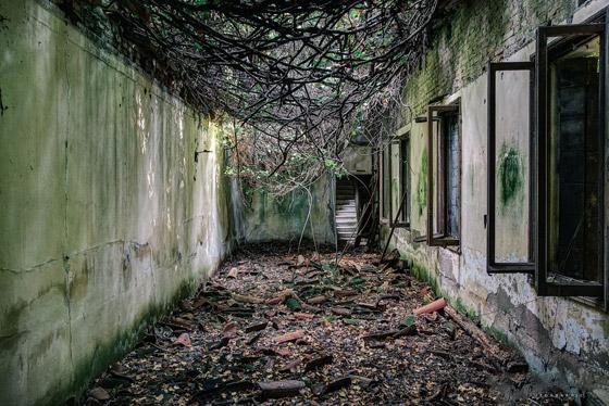 جزيرة بوفيجليا: الجزيرة الأكثر رعبا بالعالم مليئة بالجثث وتربتها رماد بشري! صورة رقم 10