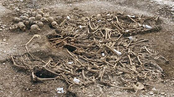 جزيرة بوفيجليا: الجزيرة الأكثر رعبا بالعالم مليئة بالجثث وتربتها رماد بشري! صورة رقم 3