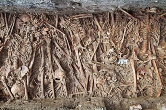 جزيرة بوفيجليا: الجزيرة الأكثر رعبا بالعالم مليئة بالجثث وتربتها رماد بشري! صورة رقم 13