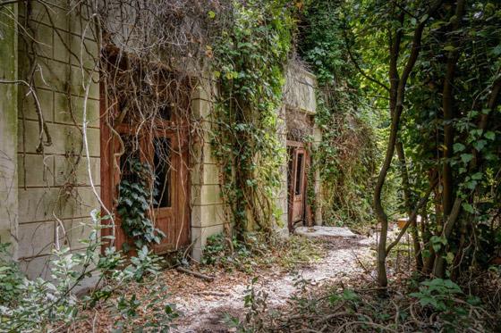 جزيرة بوفيجليا: الجزيرة الأكثر رعبا بالعالم مليئة بالجثث وتربتها رماد بشري! صورة رقم 14