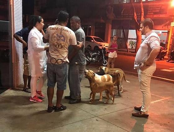 كلاب وفية طاردت سيارة إسعاف حملت صاحبها وبقيت أمام المستشفى تنتظره! صورة رقم 3