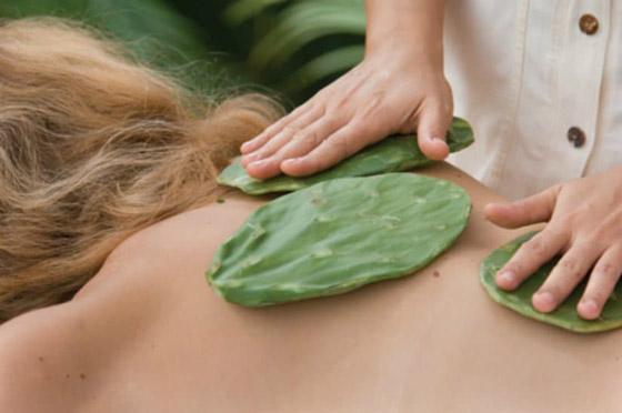 بالصور: أغرب العلاجات التي يتم استخدامها في المنتجعات الصحية صورة رقم 2