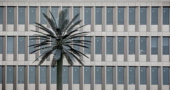 بالصور.. هذا هو المقر الجديد للاستخبارات الألمانية صورة رقم 9
