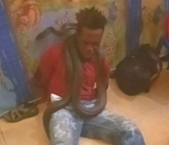 عناصر شرطة إندونيسية يعذبون لصا ويحققون معه باستخدام ثعبان ضخم! فيديو صورة رقم 3