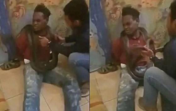 عناصر شرطة إندونيسية يعذبون لصا ويحققون معه باستخدام ثعبان ضخم! فيديو صورة رقم 4