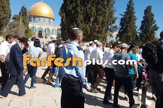 صور وفيديو: يهود متطرفين يقتحمون المسجد الأقصى بحراسة الشرطة الإسرائيلية! صورة رقم 1