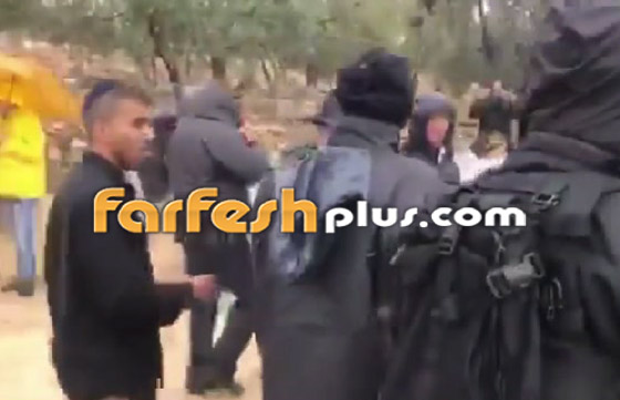 صور وفيديو: يهود متطرفين يقتحمون المسجد الأقصى بحراسة الشرطة الإسرائيلية! صورة رقم 2