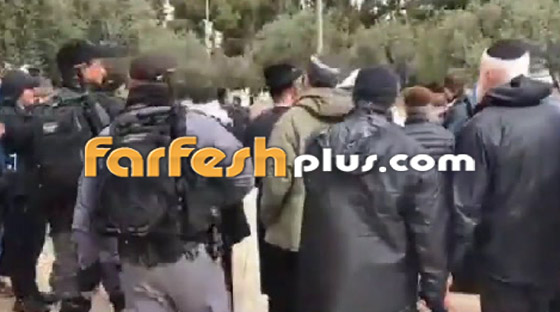 صور وفيديو: يهود متطرفين يقتحمون المسجد الأقصى بحراسة الشرطة الإسرائيلية! صورة رقم 7