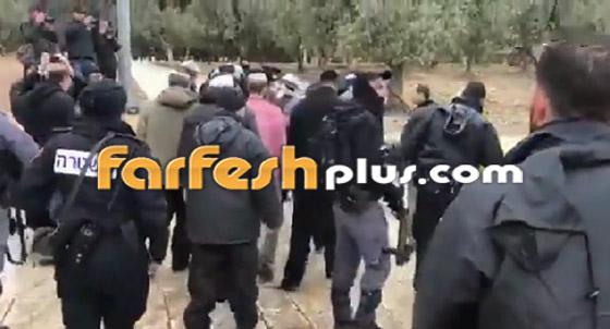 صور وفيديو: يهود متطرفين يقتحمون المسجد الأقصى بحراسة الشرطة الإسرائيلية! صورة رقم 9