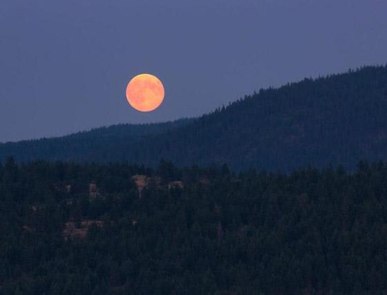 إليكم أبرز الأساطير والمعتقدات والحكايا القديمة عن ليلة اكتمال القمر صورة رقم 8