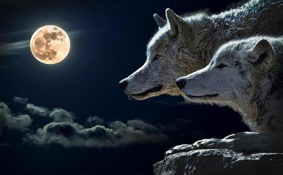 إليكم أبرز الأساطير والمعتقدات والحكايا القديمة عن ليلة اكتمال القمر صورة رقم 9