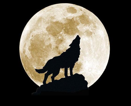 إليكم أبرز الأساطير والمعتقدات والحكايا القديمة عن ليلة اكتمال القمر صورة رقم 6