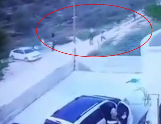 فيديو صادم: مستوطنون يهود يعتدون على عائلة فلسطينية صورة رقم 2