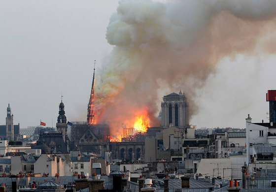 تصريح صادم لحاخام إسرائيلي متشدد عن سبب حريق نوتردام! صورة رقم 15