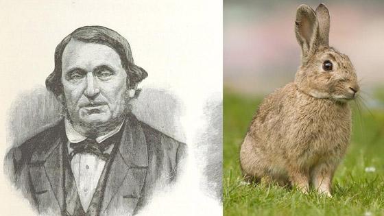 رجل تلاعب بالنظام البيئي لأستراليا فتسبب بإبادة الأرانب من البلاد! صورة رقم 3