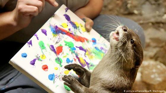 بالصور: حيوانات نادرة وغريبة في الحدائق الأوروبية صورة رقم 2
