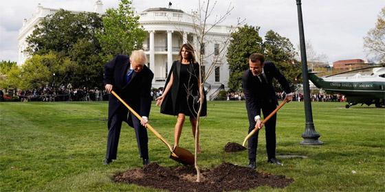 ماذا حدث بهدية ماكرون إلى ترامب؟؟! صورة رقم 1