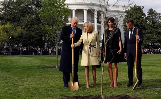 ماذا حدث بهدية ماكرون إلى ترامب؟؟! صورة رقم 2