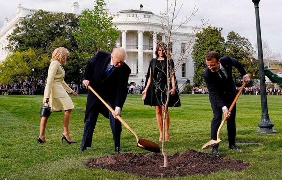 ماذا حدث بهدية ماكرون إلى ترامب؟؟! صورة رقم 5