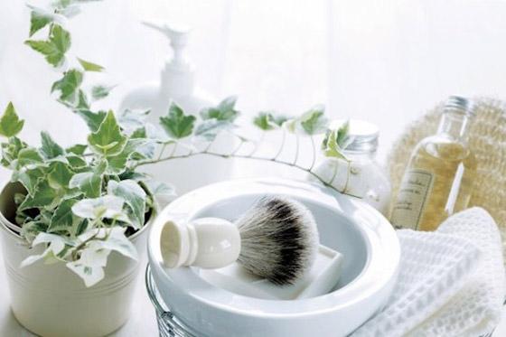 صورة رقم 4 - أفضل 5 نباتات توضع في غرفة الحمام