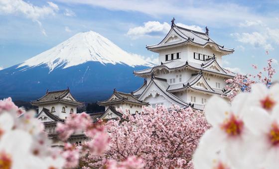 مجموعة صور تبين أن اليابان ليست بلداً لطوال القامة! صورة رقم 1