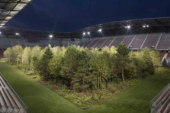 ملعب كرة قدم يتحول تماماً إلى غابة! صورة رقم 6