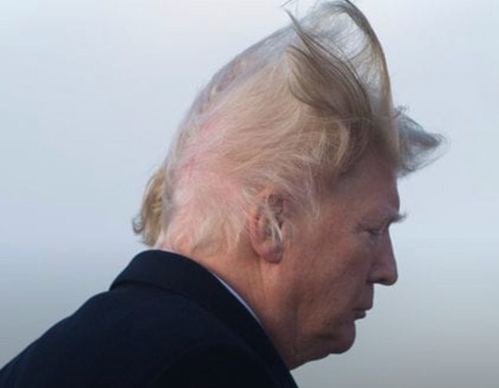 ترامب يتحدى الجميع ليثبت أن شعره المثير للجدل طبيعي وأنه الأفضل! صورة رقم 4