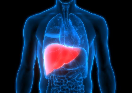 أطعمة ومشروبات مهمة لصحة الكبد صورة رقم 8