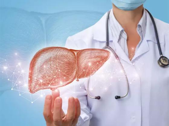 أطعمة ومشروبات مهمة لصحة الكبد صورة رقم 7