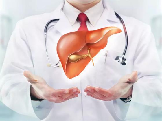 أطعمة ومشروبات مهمة لصحة الكبد صورة رقم 12