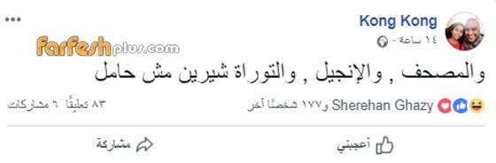 شيرين عبد الوهاب تدعم عاصي الحلاني وتتجاهل شائعات إسقاط حملها صورة رقم 3