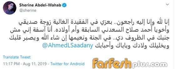 شيرين عبد الوهاب تدعم عاصي الحلاني وتتجاهل شائعات إسقاط حملها صورة رقم 6