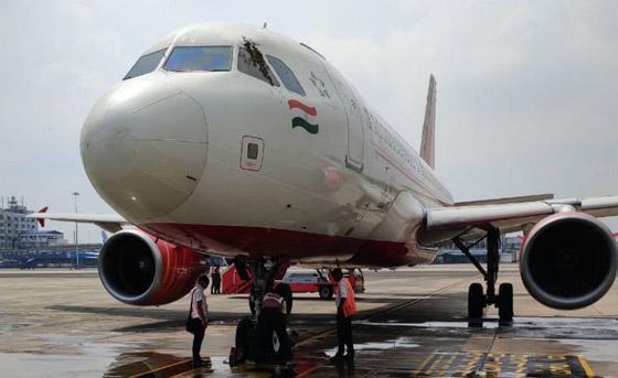سرب من النحل يعيق إقلاع رحلة طيران هندية لساعات ويهاجم الموظفين! صورة رقم 1