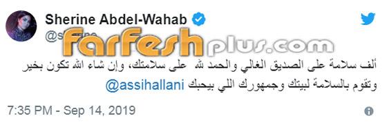 رسميا: أول عودة لشيرين عبد الوهاب إلى الحفلات الغنائية بمناسبة اليوم الوطني صورة رقم 4
