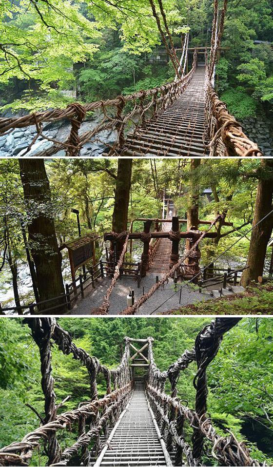 لا تراجع ولا استسلام.. جسور مرعبة ليست لأصحاب القلوب الضعيفة صورة رقم 2