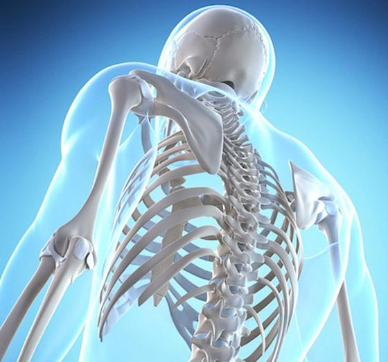 تعرفوا إلى أكثر 10 أنواع من الطعام تدمر العظام.. فاحذروها! صورة رقم 1