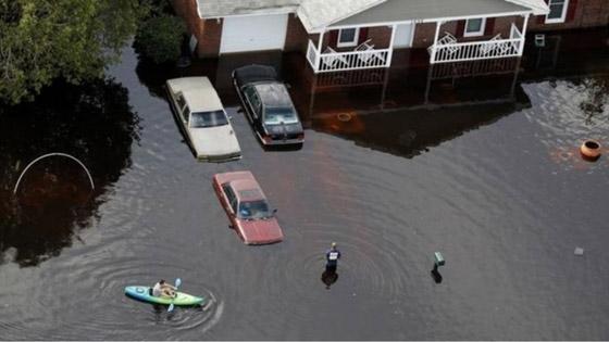 11 ألف عالم يحذرون من «معاناة لا توصف» ستواجه كوكب الأرض بسبب أزمة المناخ صورة رقم 7