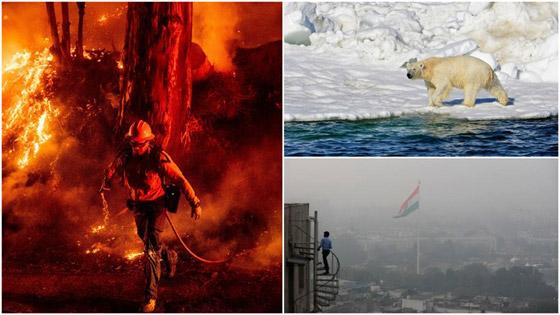 11 ألف عالم يحذرون من «معاناة لا توصف» ستواجه كوكب الأرض بسبب أزمة المناخ صورة رقم 9