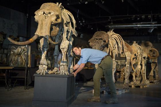 العثور على عظام حيوان عاش قبل أكثر من 140 قرنا صورة رقم 5