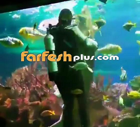فيديو مدهش.. غواص يراقص سمكة قرش ضخمة في مشهد رومانسي مميز! صورة رقم 3