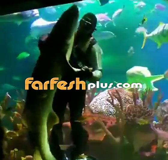 فيديو مدهش.. غواص يراقص سمكة قرش ضخمة في مشهد رومانسي مميز! صورة رقم 5