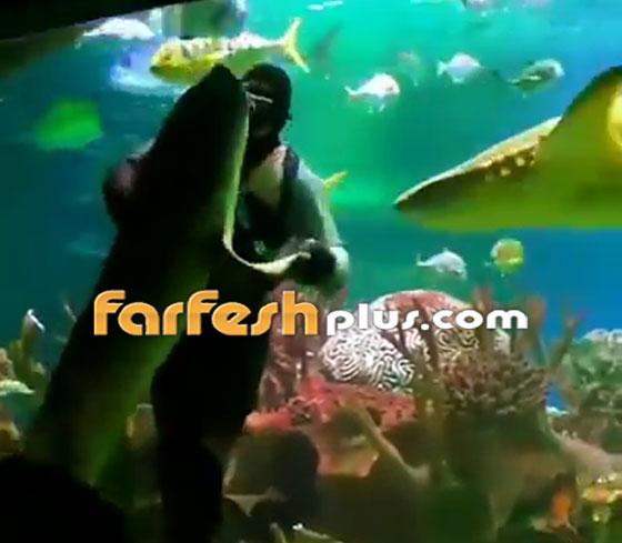 فيديو مدهش.. غواص يراقص سمكة قرش ضخمة في مشهد رومانسي مميز! صورة رقم 6