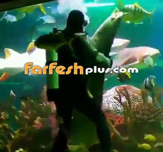 فيديو مدهش.. غواص يراقص سمكة قرش ضخمة في مشهد رومانسي مميز! صورة رقم 8