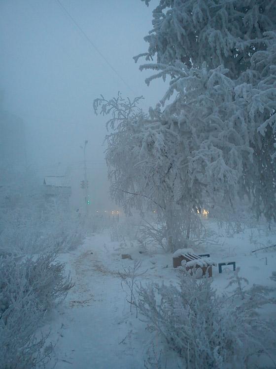ما هي أبرد مدينة على كوكب الأرض وأين تقع؟ صورة رقم 8