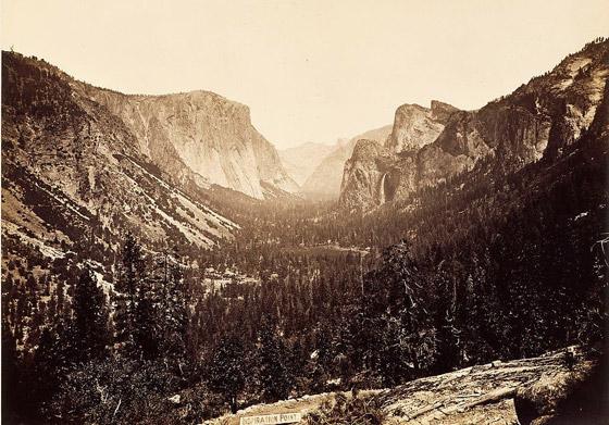 بفضل مصور ورئيس.. ظهور قانون أنقذ الطبيعة في أمريكا صورة رقم 4
