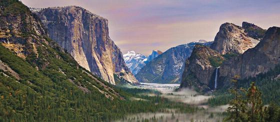 بفضل مصور ورئيس.. ظهور قانون أنقذ الطبيعة في أمريكا صورة رقم 6