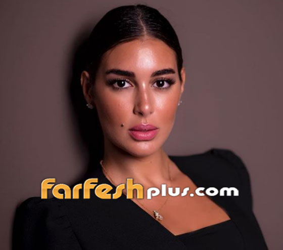 صور ياسمين صبري زوجة أحمد أبو هشيمة في طائرتها الخاصة صورة رقم 27