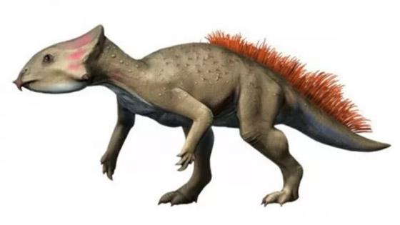 بالصور: تعرفوا إلى 12 من أصغر حيوانات ما قبل التاريخ المذهلة صورة رقم 4