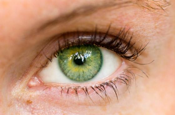 صورة رقم 5 - ماذا تعني ألوان العيون؟.. تعرف على شخصيتك من لون عيونك!