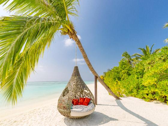 لماذا يجب أن تزور جزر المالديف الخلابة مرة واحدة على الأقل في العمر؟ صورة رقم 5